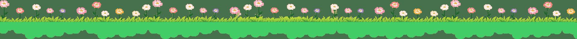 jardí amb flors